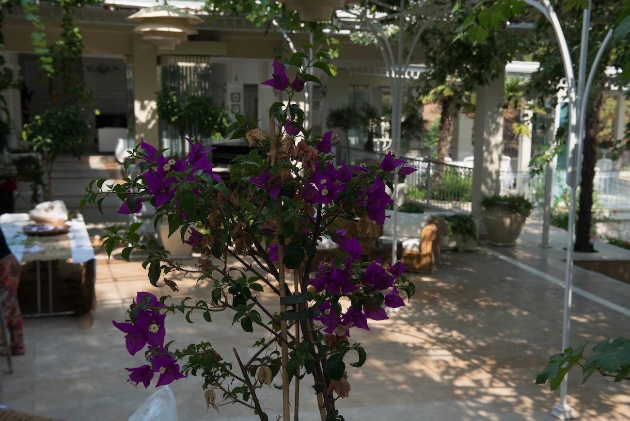 wedding-at-Danai-resort-Halkidiki