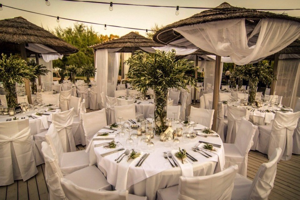 olive-branches-wedding-theme